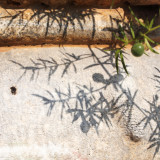 Matera cultura sassi