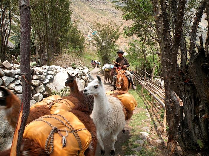 Km 82 Piscacucho